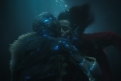 Immagine 24 - La Forma dell'Acqua - The Shape of Water, foto ed immagini del film di Guillermo del Toro