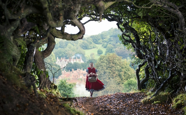 Immagine 2 - Into the Woods