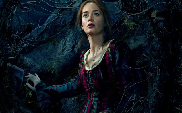 Immagine 6 - Into the Woods